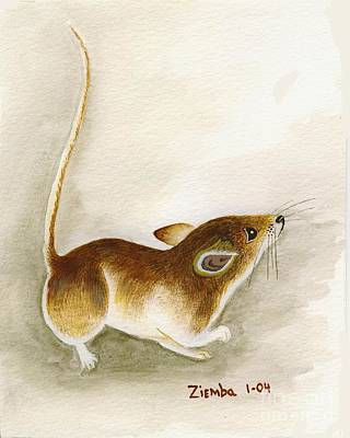 Mice Painting - High Tail Mouse by Lori Ziemba
