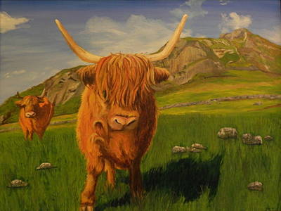 Highland Coos Art Print by Kelly Bossidy
