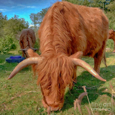 Longhorn Pasture Painting - Highland Cow Painting by Antony McAulay