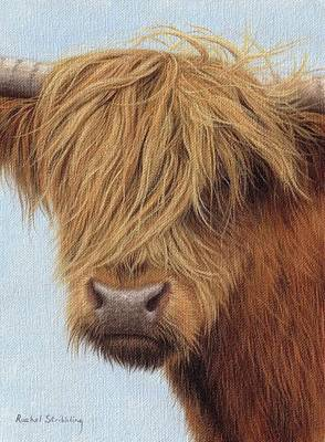 Cow Art Painting - Highland Cow Painting by Rachel Stribbling