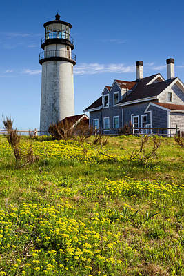 Highland Light Spring Art Print by Bill Wakeley