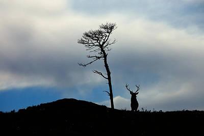 Photograph - Highland Silhouettes by Gavin Macrae