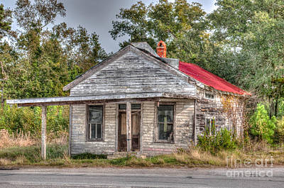 Photograph - Highway 17 Shack by Dale Powell