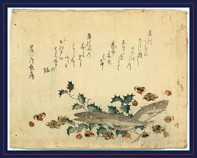 Plum Drawing - Hiiragi Ni Iwashi Ni Ume by Ryuryukyo, Shinsai (c.1764-1820), Japanese