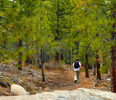 Hike On 2 Art Print by Brent Dolliver