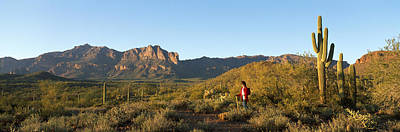 Hiker Standing On A Hill, Phoenix Art Print by Panoramic Images