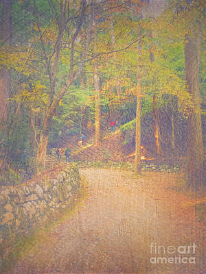 Photograph - Hikers Walking Along Tranquil Kozan-ji Forest Kyoto Japan by Beverly Claire Kaiya