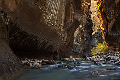 Remote Photograph - Hiking The Narrows by Andrew Soundarajan