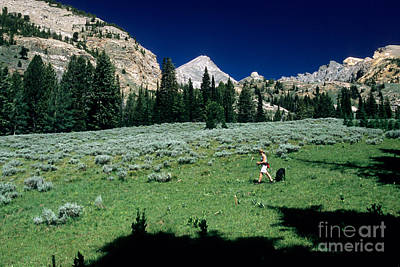 Hiking The Pioneer Mountains Art Print by William H. Mullins