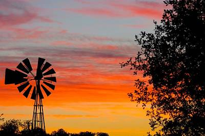 Hill Country Colors Art Print