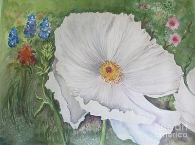 Painting - Hill Country White Poppy by Lynn Maverick Denzer