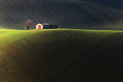 Rolling Hills Photograph - Hill by Luca Spaventa
