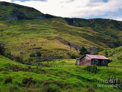 Photograph - Hillside Cabin by Michele Penner
