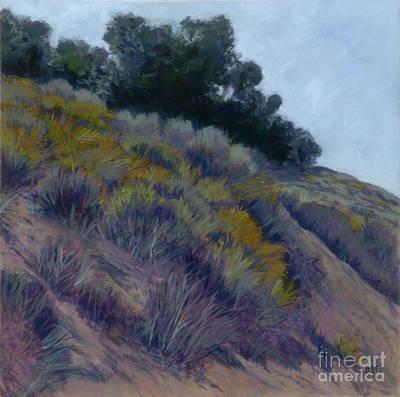 Painting - Hillside - Drum Canyon by Betsee  Talavera