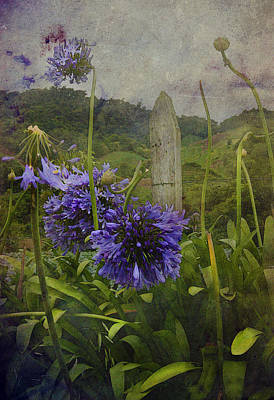 Art Print featuring the photograph Hillside Flowers by Kandy Hurley