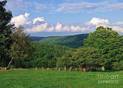 Photograph - Hillside Splendor by Christian Mattison