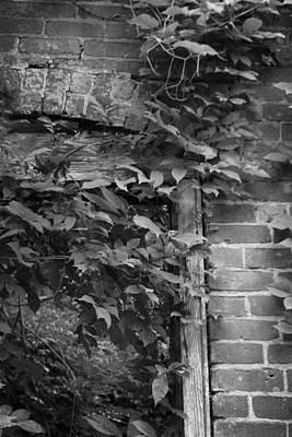 Keith Richards - Hillsville SC I by Kelly Hazel