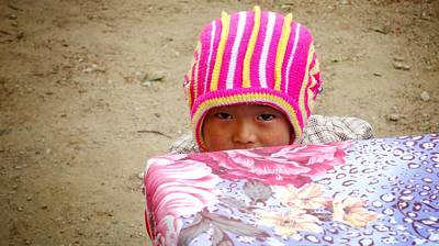 Photograph - Himalayan Cuteness by Greg Holden