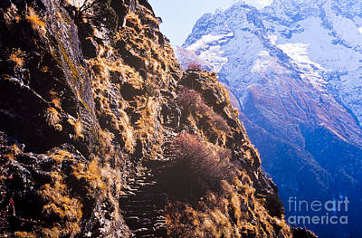 Mountain Royalty-Free and Rights-Managed Images - Himalayan Trekking by Tim Hester