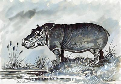 Animals Drawings - Hippo by Anthony Mwangi