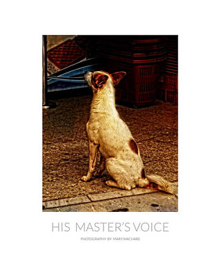 Listening Digital Art - His Master's Voice - Poster by Mary Machare