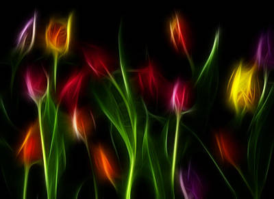 Print featuring the digital art His Tulips by Karen Showell