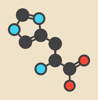 Histidine Amino Acid Molecule Art Print by Molekuul