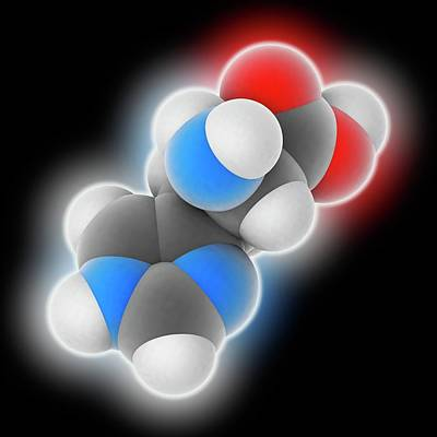 Biochemical Photograph - Histidine Molecule by Laguna Design