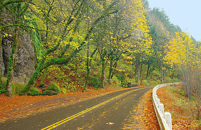 Historic Columbia Gorge Highway Art Print
