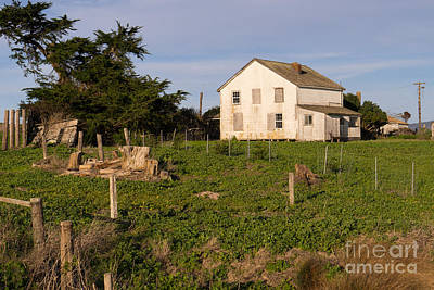 Contemplative Photograph - Historic D Ranch In Point Reyes California Dsc2357 by Wingsdomain Art and Photography