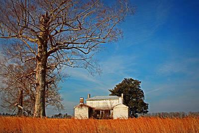 Building Photograph - Historic Forgotten Beechwood by Ginny Gillam