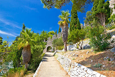 Photograph - Historic Hvar Fortification Wall In Nature  by Brch Photography