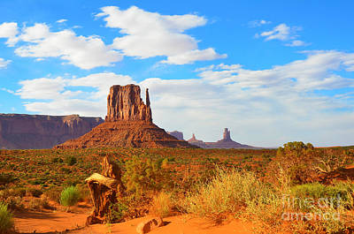 Photograph - Historic Monument Valley by Debra Thompson