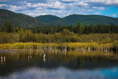 Photograph - Historic Tamarac Lodge Beaver Pond by Kathleen Scanlan
