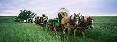 Historical Reenactment, Covered Wagons Print by Panoramic Images