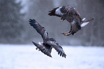 Snowfall Photograph - Hit The Road! by Doris Reindl