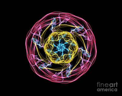 Digital Art - Hj-whisp Flower by Vix Edwards