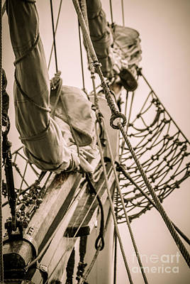 Photograph - Hms Bounty Sails by Patricia Trudell