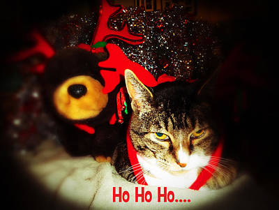 Photograph - Ho Ho Ho by Jacqueline  DiAnne Wasson