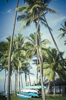 Impressionist Landscapes - Hoaloha Beach Park Canoe Club Kahului Maui Hawaii by Sharon Mau