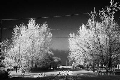 hoar frost covered trees on street in small rural village of Forget Saskatchewan Canada Art Print by Joe Fox