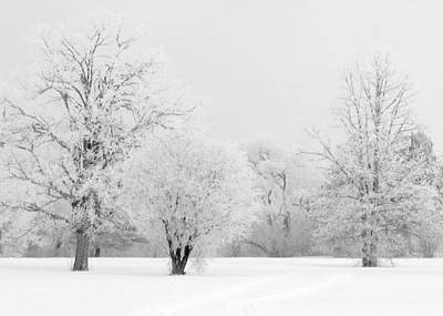 Photograph - Hoar Frost Morning by Rob Huntley