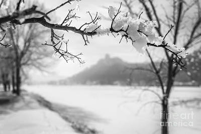 Art Print featuring the photograph Hoarfrost With Sugarloaf by Kari Yearous