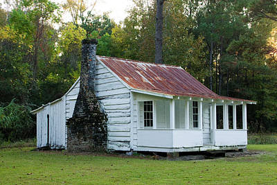 Hobcaw Cabin Art Print