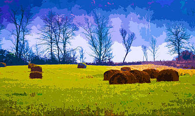 Haybale Mixed Media - Hocking Hills 10 by Brian Stevens