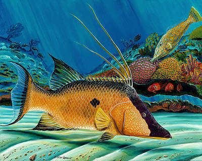 Hog And Filefish Art Print