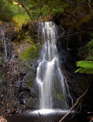 Photograph - Hogarth Falls Tasmania by Glen Johnson