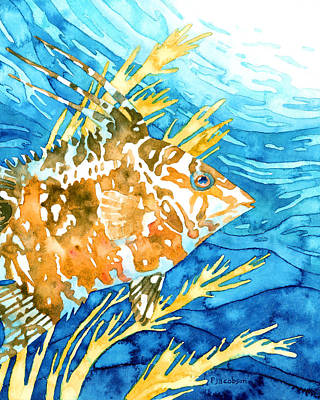 Painting - Hogfish Portrait by Pauline Jacobson