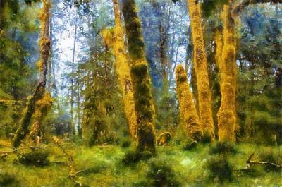 Olympic National Park Digital Art - Hoh Rain Forest by Kaylee Mason