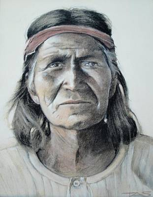 Native American Spirit Portrait Drawing - Hohoni by Terri Ana Stokes